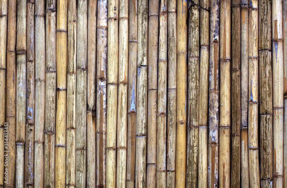 Fototapeta bamboo fence texture background