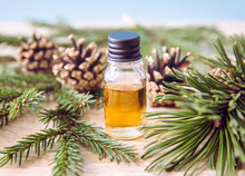 Pine And Fir Tree Aroma Oil Bottle With Pine Tree And Fir Tree Branches For Decoration On Lights Wooden Background. Essential Oil Concept.