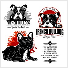 French Bulldog - Vector Set Fo...