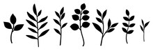 Set Of Decorative Leaf Silhouette. Different Vector Branches. Simple Stencils