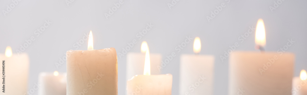 Fototapeta selective focus of burning white candles glowing isolated on grey, panoramic shot