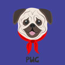 Dog Face On A Colored Background. Pug Breed. Flat Picture. Illustration In The Style Of Pop Art.