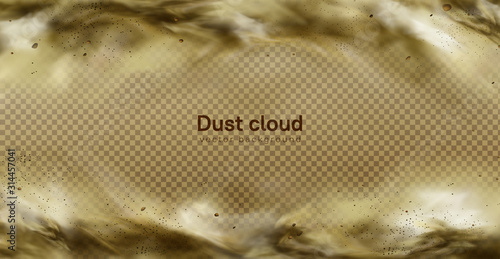 Desert sandstorm, brown dusty cloud or dry sand flying with gust of wind, big ex Canvas Print