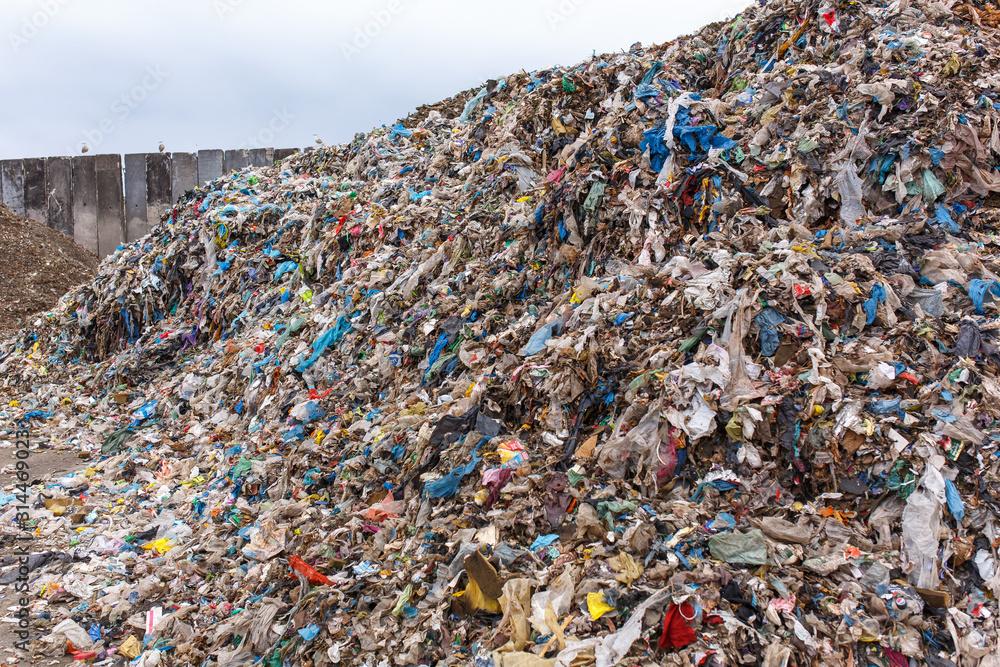 Fototapeta Punkt selektywnej zbiórki odpadów, recycling