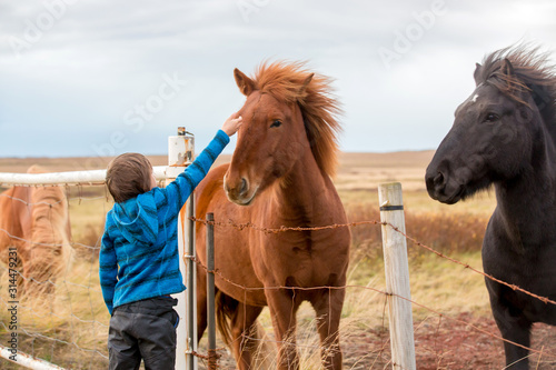 Cuadros en Lienzo Beautiful child and horses in the nature, early in the morning on a windy autumn