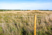 Barbed Wire Fence To The Rural...
