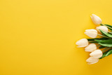 Fototapeta Tulipany - top view of spring tulips on colorful yellow background