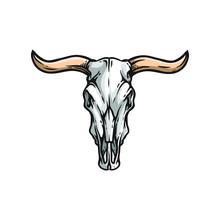 Buffalo Or American Bison Skull. American Indians Dead Cow Head Vector Illustration