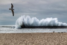 Giant Waves Breaking On The Breakwater And The Lighthouse