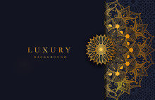 Luxury Background With Gold Is...