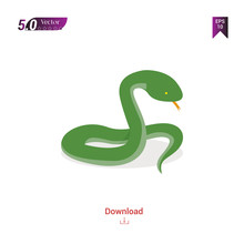 Colorful Snake  Animal Vector ...