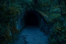 Tunel W Lesie