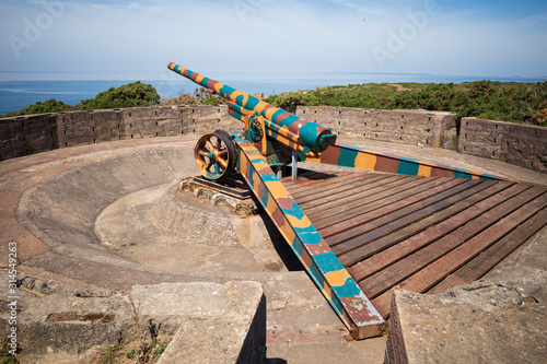 French canon at battery Moltke Canvas Print