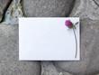 Wedding details flat lay on stone background. Wedding invitation. Ring box. Mock up. Copyspace. Clover.