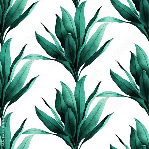 tropikalny-wzor-z-egzotycznych-zielonych-ti-pozostawia-na-bialym-tle