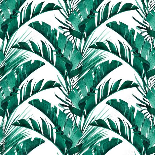 tropikalny-wzor-z-egzotycznych-lisci-bananow-i-palm-na-bialym-tle