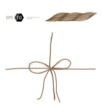 Vector Jute Rope Isolated On W...