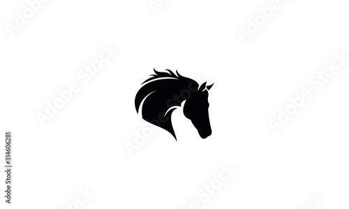 Fotografía silhouette of a horse