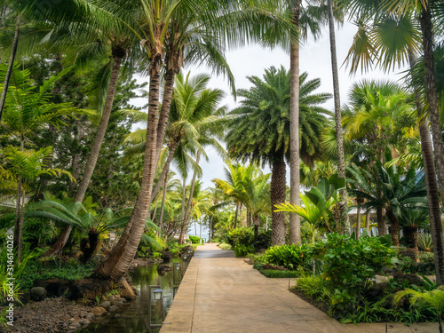 Fresh tropical garden on a beautiful day with some rain in Noumea, French Polynesia, South Pacific Ocean.