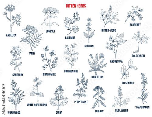 Canvastavla Bitter herbs collection