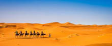 Camel Caravan Going Through The Sand Dunes In Beautiful Sahara Desert. Amazing View Nature Of Africa. Artistic Picture. Beauty World. Panorama