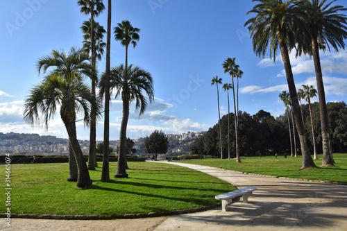 Obraz na plátně View of the Capodimonte public park in Naples, Italy