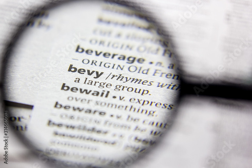 Word or phrase Bevy in a dictionary. Canvas Print