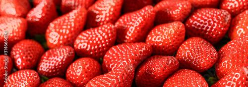 truskawki-czerwone-tlo-swiezy