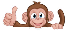A Monkey Cartoon Character Animal Peeking Over A Sign And Giving A Thumbs Up