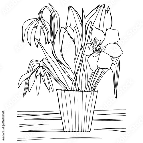 Fototapeta Hand drawing coloring book for children and adult mascara. Beautiful drawings with patterns and small details. Still life vase with wildflowers, spring garden flowers. A series of anti-stress pictures obraz na płótnie