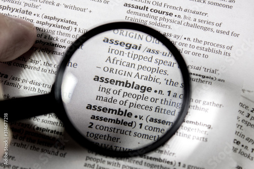 The word or phrase assemblage in a dictionary. Wallpaper Mural