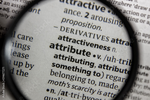 The word or phrase attribute in a dictionary. Canvas Print