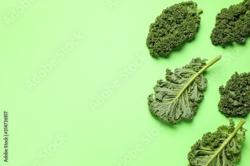 Fresh kale leaves on light green background, flat lay. Space for text