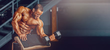 Bodybuilding Workout. Handsome...