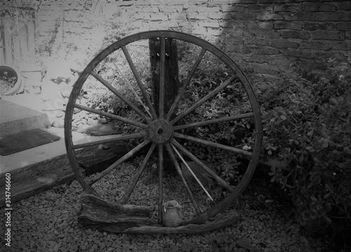 Cuadros en Lienzo  Jardineria rueda de carreta