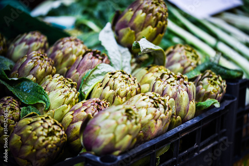 fresh artichoke close up view Canvas Print