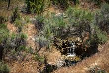 Small Stream Of Water Falling Into Timy Pool In Scrub Desert