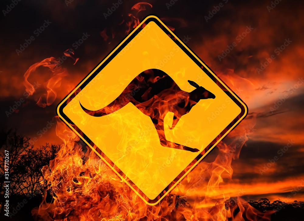 Fototapeta Feuer Naturkatastrophe in Australien