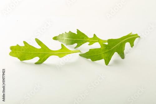 Fototapeta sałata rukola liść obraz