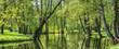 Leinwanddruck Bild - summer landscape, pond and green trees in the park.