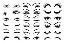 Eyelashes Vector Set Collectio...