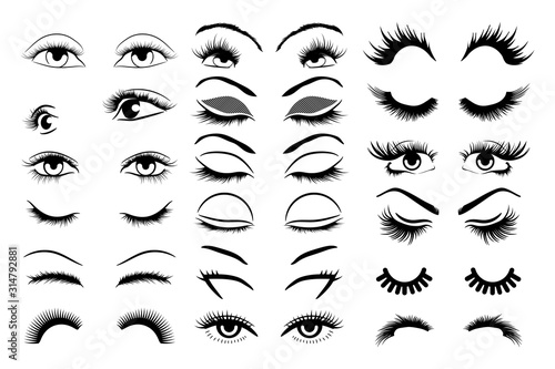 Fotografia, Obraz eyelashes vector set collection graphic clipart design