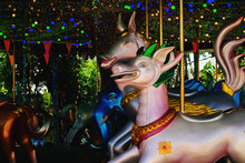 Carousel In A Holiday Park