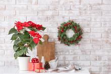 Christmas Plant Poinsettia On Kitchen Table