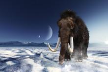 月が見える氷の大地を...