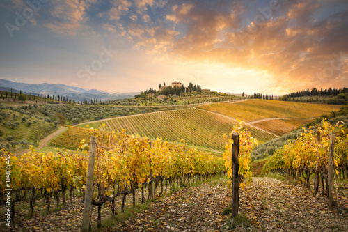 Sunset in Gaiole in Chianti with Chianti vineyards Fototapet