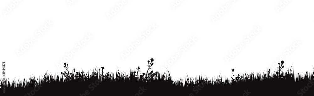 Fototapeta Vector silhouette of meadow on white background. Symbol of nature with grass.