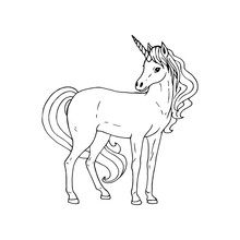 Hand Drawn Unicorn. Vector Black White Sketch.