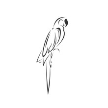 Vector Of A Parrot Icon To Animal Black And White Logo, Sign, Design. Symbol. Illustrator. On White Background
