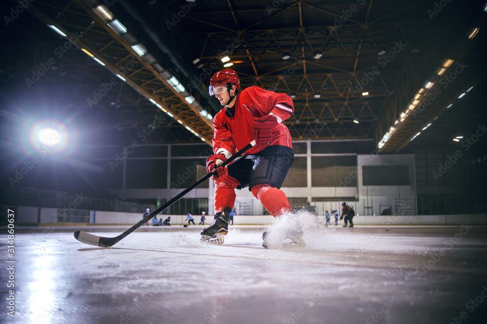 Fototapeta Dedicated strong caucasian handsome hokey player playing hockey on ice in hall.